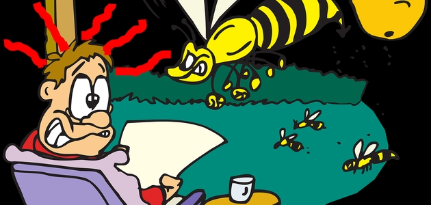 Wiedza o alergiach w pigułce