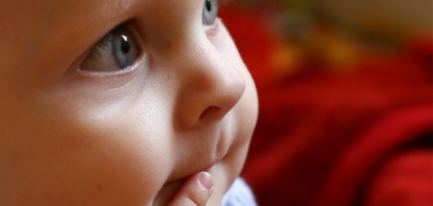 Mamo, boję się, gdy cię nie widzę – jak dobrze przejść przez lęk separacyjny u dziecka