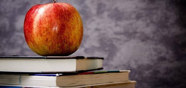 Cykl EDUKACJA: Podręczniki dla czwartoklasisty