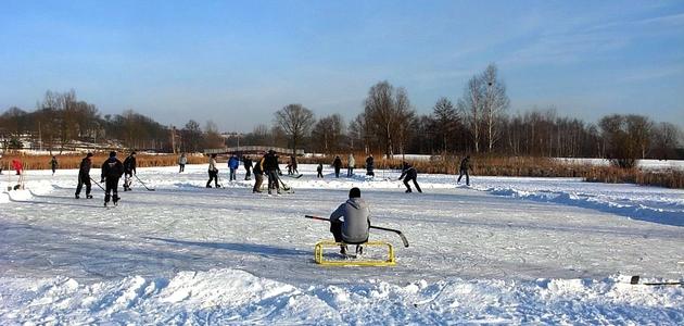 Śniegowe zabawy z dziećmi