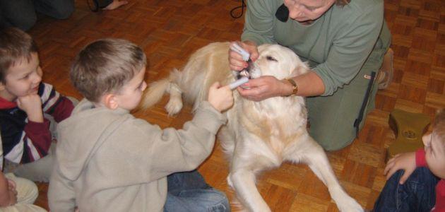 Terapie wspomagające rozwój dziecka