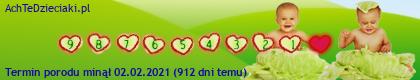 suwaczek nr 69